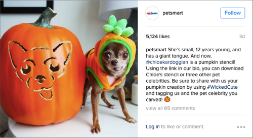 newdevelopments-1017-Petsmart-Halloween-Dog